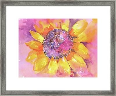 Pink Purple Yellow Sunflower  Framed Print