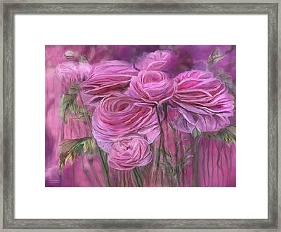 Pink Ranunculus Framed Print by Carol Cavalaris