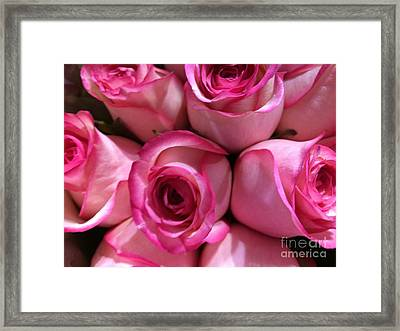 Pink Rose Bouquet Framed Print