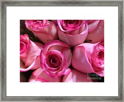 Pink Rose Bouquet Framed Print