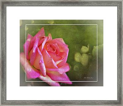 Pink Rose Dream Digital Art 3 Framed Print
