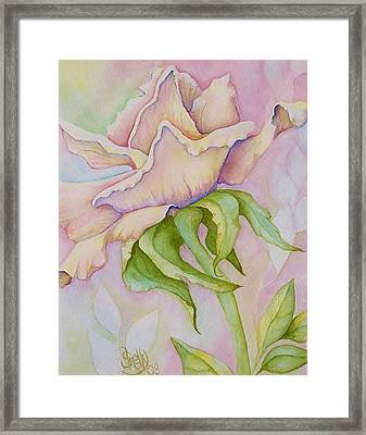 Pink Rose Framed Print by Shelly Ziska