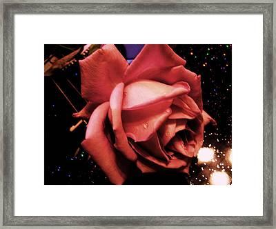 Pink Rose Framed Print by Nereida Slesarchik Cedeno Wilcoxon