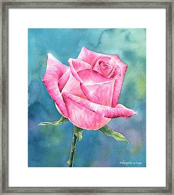 Pink Rose Framed Print by Olimpia Wong