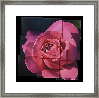 Pink Rose Photo Sculpture Framed Print