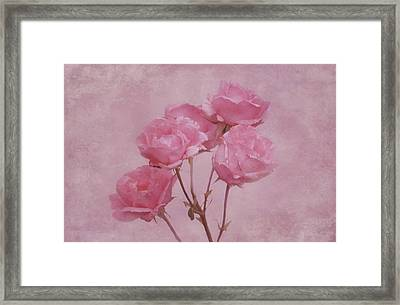 Pink Roses Framed Print by Sandy Keeton