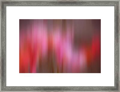 Pink Framed Print by Sharon Lisa Clarke
