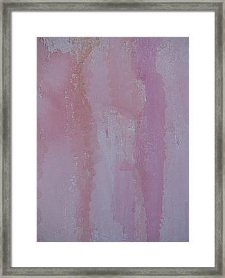 Pink Skirt Framed Print