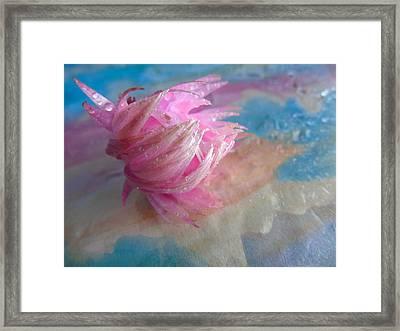 Pink Splashes Framed Print