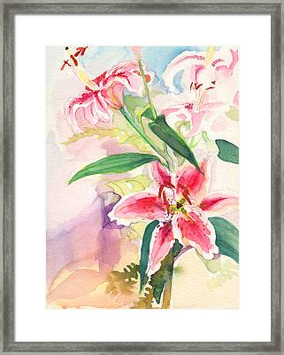 Pink Stargazer Lilies Framed Print by Nancy Watson