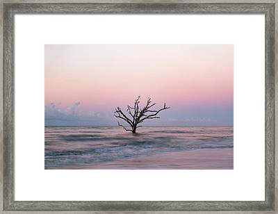 Pink Sunrise Framed Print