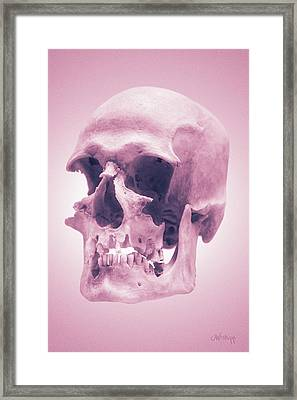 Framed Print featuring the photograph Pink Textures by Joseph Westrupp