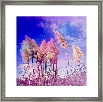 Pink Toi Toi Grasses Framed Print