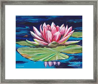 Pink Tranquility Framed Print