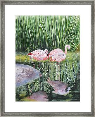 Framed Print featuring the painting Pink Trio by Mary McCullah
