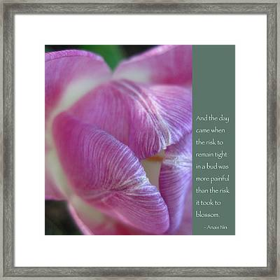 Pink Tulip With Anais Nin Quote Framed Print