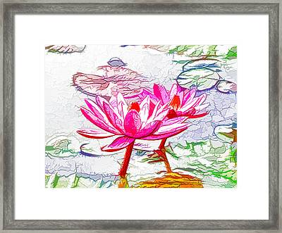 Pink Water Lily Flowers Blooming On Pond Framed Print by Lanjee Chee