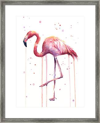 Pink Watercolor Flamingo Framed Print by Olga Shvartsur