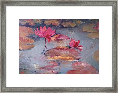 Pink Waterlilies Framed Print