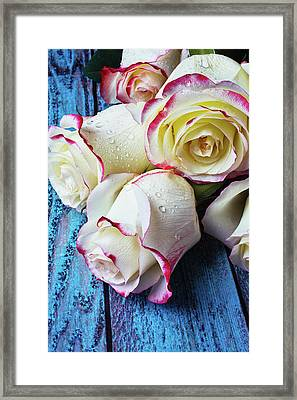 Pink White Roses On Blue Boards Framed Print by Garry Gay