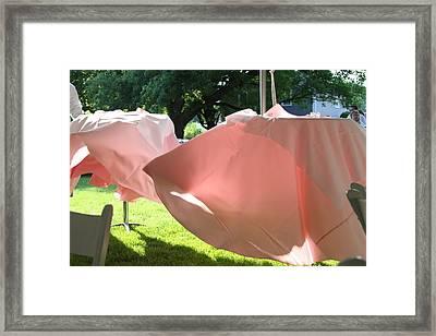 Pink Wispers Framed Print
