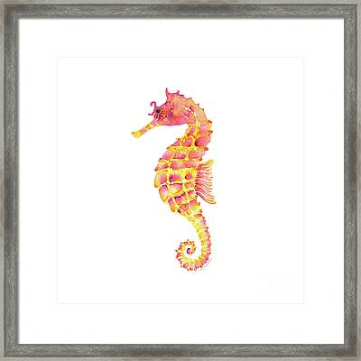 Pink Yellow Seahorse - Square Framed Print by Amy Kirkpatrick