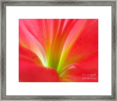 Pink Zen Framed Print by Krissy Katsimbras
