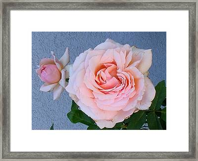 Framed Print featuring the photograph Pinkie by Fred Wilson