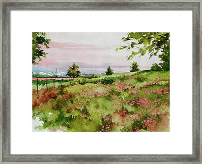 Pinks Framed Print by Art Scholz