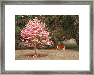 Pinky And The Bench - Impressionism Framed Print