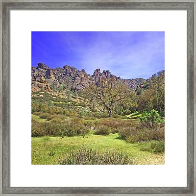 Framed Print featuring the photograph Pinnacles National Park Watercolor by Art Block Collections