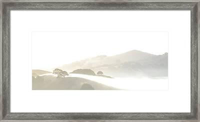 Pinole Valley Morning Mist Framed Print