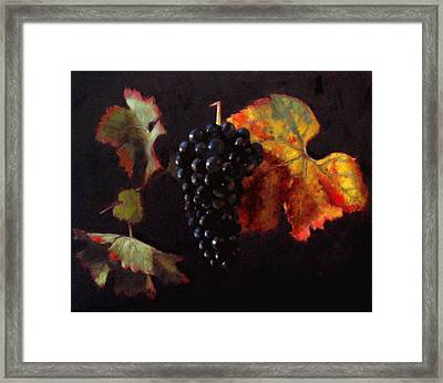 Pinot Noir Grape With Autumn Leaves Framed Print by Takayuki Harada