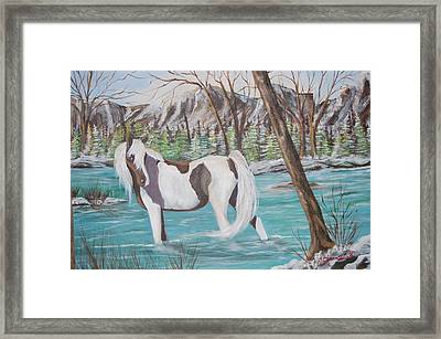 Pinto Cooling Her Heels Framed Print by Janna Columbus