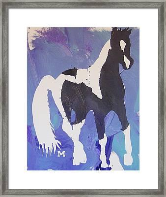 Pinto Pony Framed Print