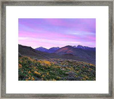 Pioneer Mountain Sunset Framed Print by Leland D Howard