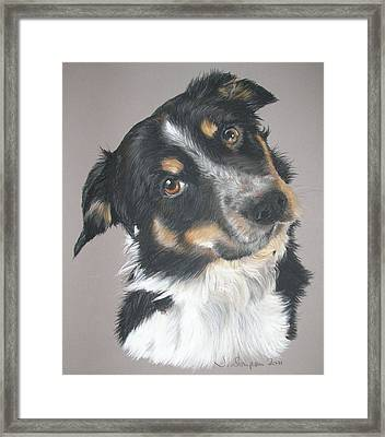Pip Framed Print by Joanne Simpson