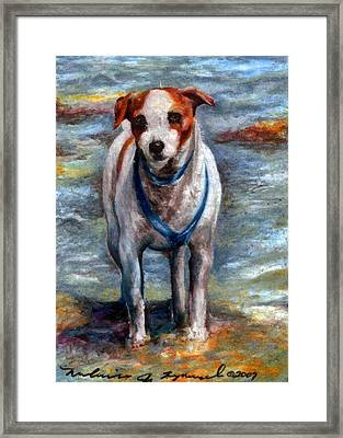 Piper On The Beach Framed Print by Melissa J Szymanski