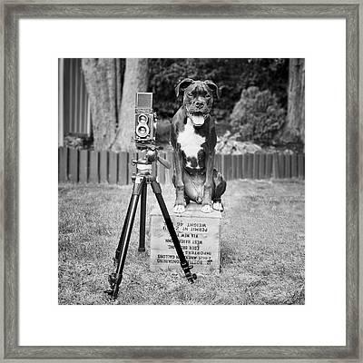 Pipographer Piper The Photographer Framed Print