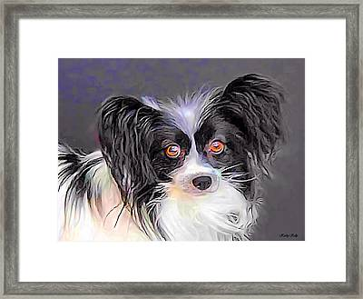 Pippin The Papillon Framed Print