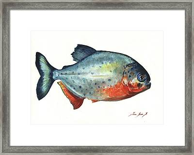 Piranha Fish Framed Print by Juan Bosco