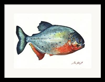 Piranha Paintings Framed Prints