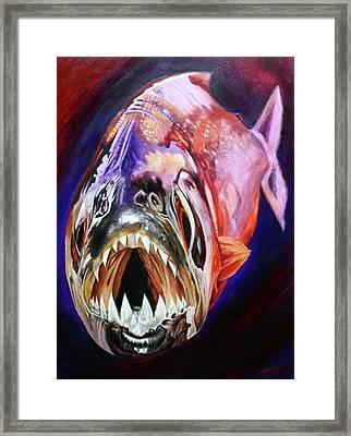 Piranha Framed Print by Todo Brennan