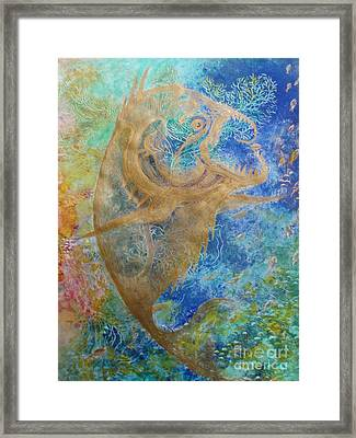 Piranha Water Framed Print