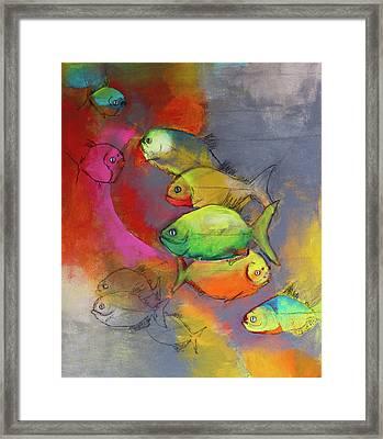 Piranhas Framed Print by Amy Shamansky