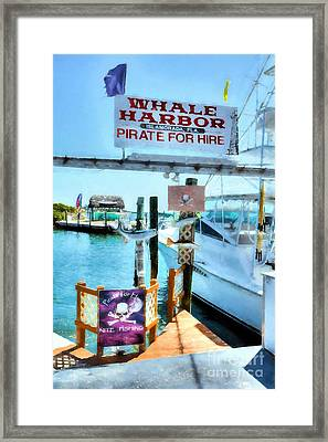 Pirate For Hire Framed Print by Mel Steinhauer