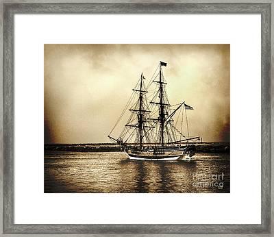 Pirates Life Framed Print by David Millenheft