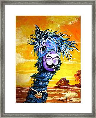 Pisco The Surfing Alpaca Framed Print