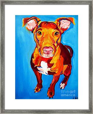 Pit Bull - Chino Framed Print by Alicia VanNoy Call