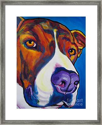 Pit Bull - Eric Framed Print by Alicia VanNoy Call